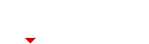 Logo - Dutch Diamond Group - diapositief